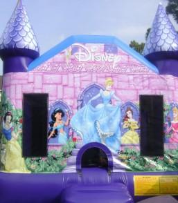 Classic Disney Princess2