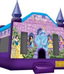 Classic Disney Princess 2wge2hmnz7fl10ogm4stfu 2wjtp6fzkgnk6k9998lslc Homepage Shop